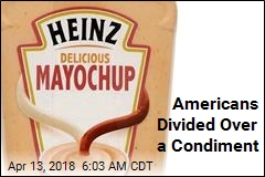 Americans Divided Over a Condiment
