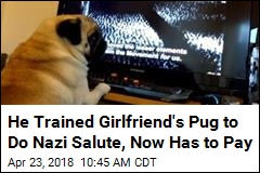 Man Fined for Viral Video of Pug Giving Nazi Salute