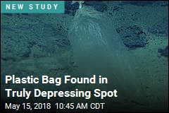 In One of Planet's Most Remote Spots, a Plastic Bag
