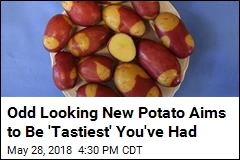 Odd Looking New Potato Aims to Be 'Tastiest' You've Had