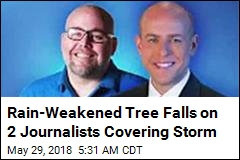 Journalists Covering Storm Killed by Falling Tree