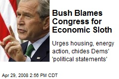 Bush Blames Congress for Economic Sloth