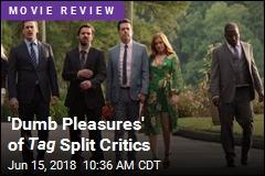 Tag 's 'Dumb Pleasures' Split Critics