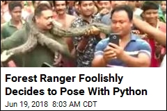 Ranger Finds Out Why Pics With Pythons Aren't a Good Idea