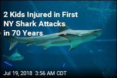 2 Kids Bitten in Suspected Long Island Shark Attacks