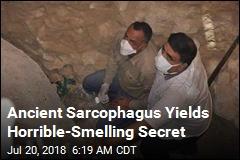 Ancient Sarcophagus Yields Horrible-Smelling Secret