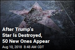 After Trump's Star Is Destroyed, 50 New Ones Appear