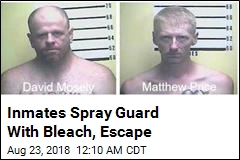 Kentucky Inmates Injure Staff, Escape