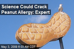 Science Could Crack Peanut Allergy: Expert