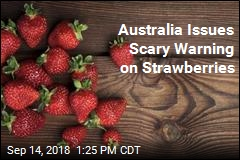 Australia Issues Scary Warning on Strawberries