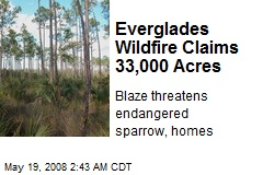 Everglades Wildfire Claims 33,000 Acres