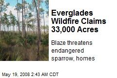 Everglades Wildfire Claims 33,000 Acres