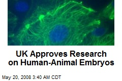UK Approves Research on Human-Animal Embryos