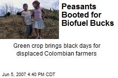Peasants Booted for Biofuel Bucks