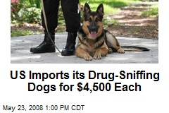 US Imports its Drug-Sniffing Dogs for $4,500 Each
