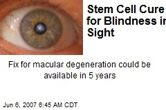 Stem Cell Cure for Blindness in Sight