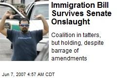Immigration Bill Survives Senate Onslaught