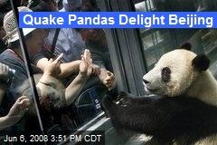 Quake Pandas Delight Beijing