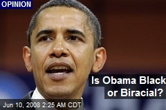 Is Obama Black or Biracial?