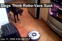 Dogs Think Robo-Vacs Suck