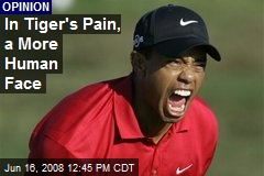 In Tiger's Pain, a More Human Face