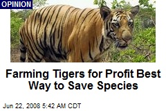 Farming Tigers for Profit Best Way to Save Species