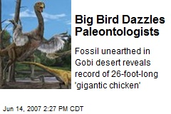 Big Bird Dazzles Paleontologists