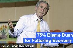 75% Blame Bush for Faltering Economy