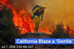 California Blaze a 'Gorilla'