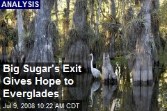 Big Sugar's Exit Gives Hope to Everglades