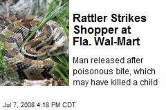 Rattler Strikes Shopper at Fla. Wal-Mart