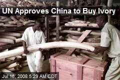 UN Approves China to Buy Ivory