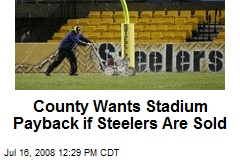 County Wants Stadium Payback if Steelers Are Sold