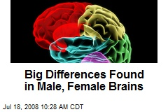 Big Differences Found in Male, Female Brains