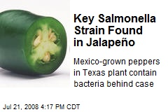 Key Salmonella Strain Found in Jalapeño
