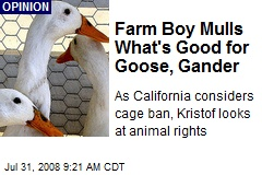 Farm Boy Mulls What's Good for Goose, Gander