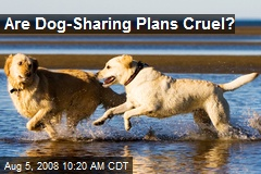 Are Dog-Sharing Plans Cruel?