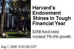 Harvard's Endowment Shines in Tough Financial Year