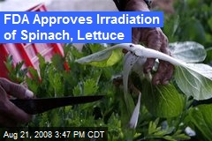 FDA Approves Irradiation of Spinach, Lettuce