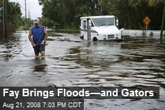 Fay Brings Floods—and Gators
