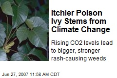 Itchier Poison Ivy Stems from Climate Change