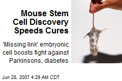 Mouse Stem Cell Discovery Speeds Cures