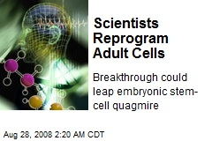 Scientists Reprogram Adult Cells