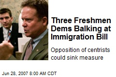 Three Freshmen Dems Balking at Immigration Bill