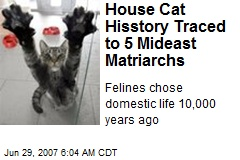 House Cat Hisstory Traced to 5 Mideast Matriarchs