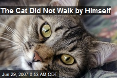 The Cat Did Not Walk by Himself