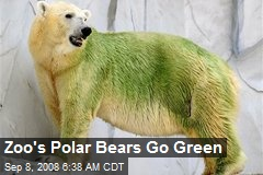 Zoo's Polar Bears Go Green