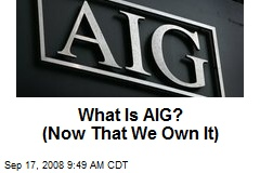 What Is AIG? (Now That We Own It)