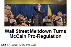 Wall Street Meltdown Turns McCain Pro-Regulation