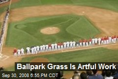 Ballpark Grass Is Artful Work